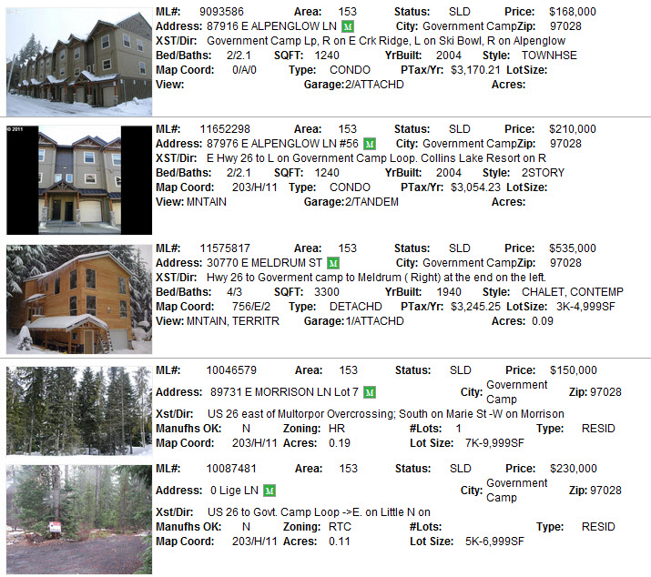 Government Camp Real Estate Sales