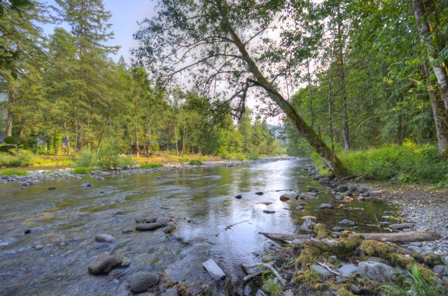 The pristine Salmon River in Welches Oregon in the foothills of the Cascade mountains at Mt. Hood.