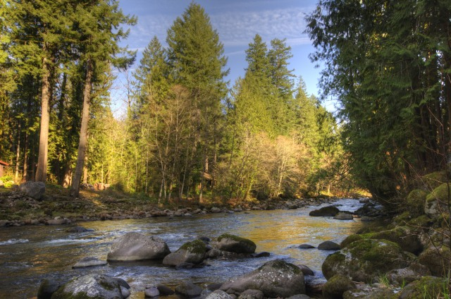 Salmon River in the Mt. Hood Cascade Foothills