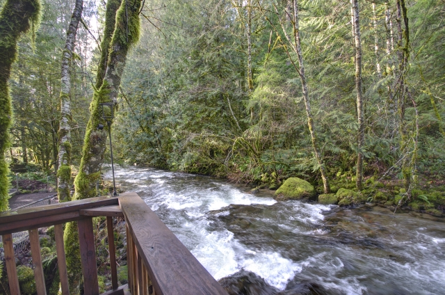 Along the banks of Clear Creek in Rhododendron Oregon