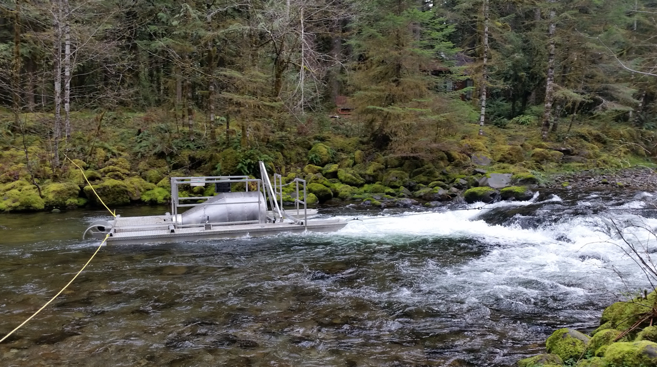 Still Creek fish trap in the Mt. Hood National Forest