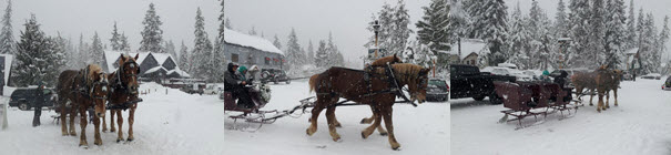Sleigh Rides in Government Camp Oregon