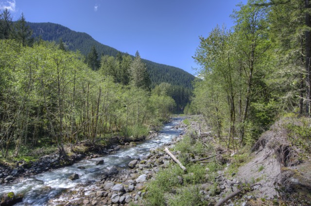The Sandy River