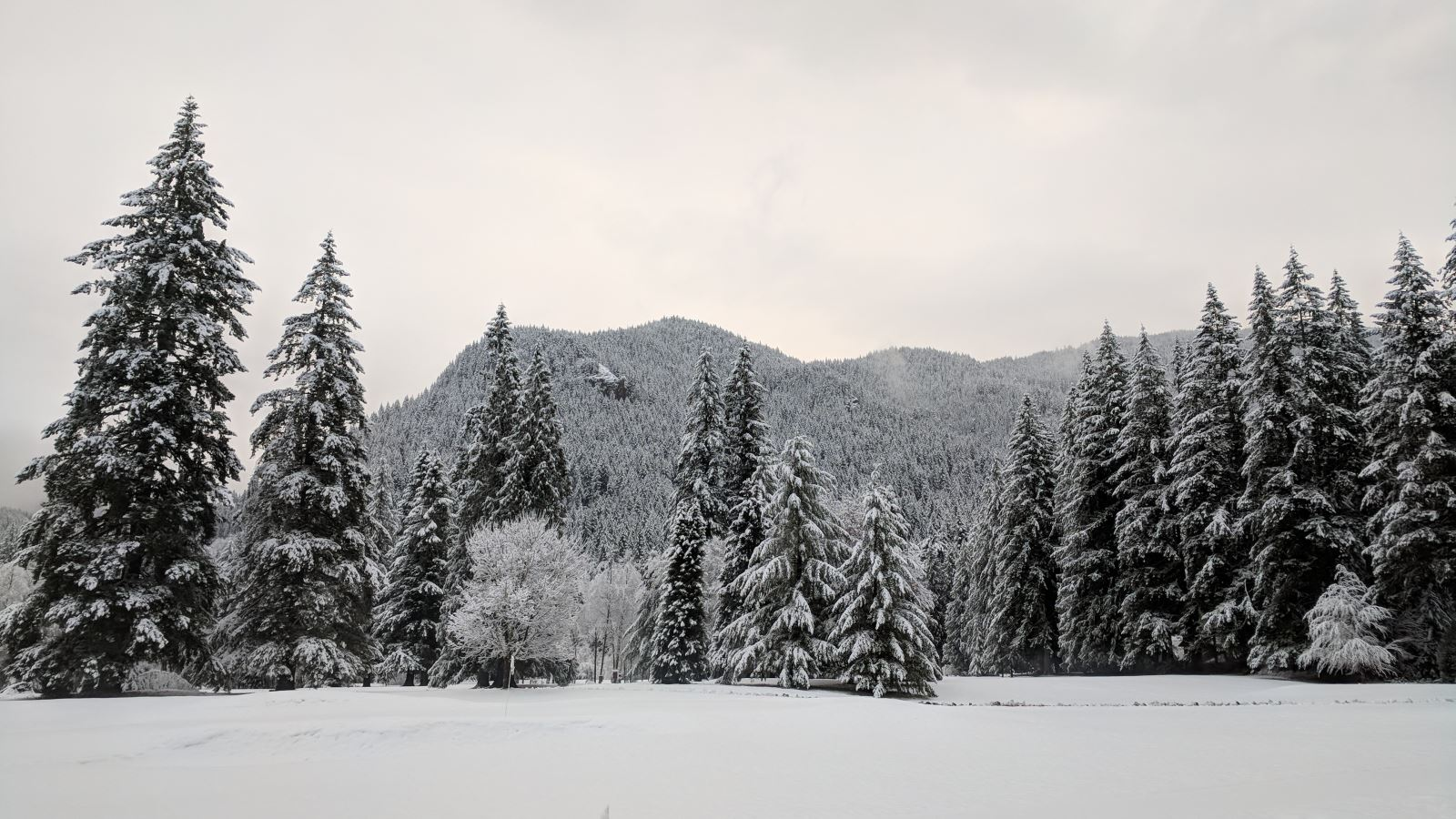 First Snow Welches Oregon near the Resort at the Mountain Golf Course