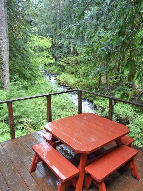 Henry Creek Cabin View